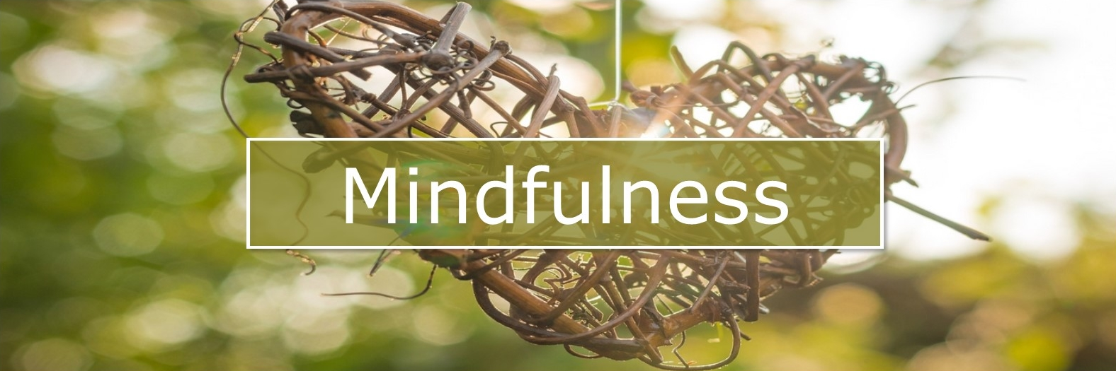 Mindfulness in Havelterberg, Steenwijk, Meppel, Overijssel bij Sylvia van der Laan