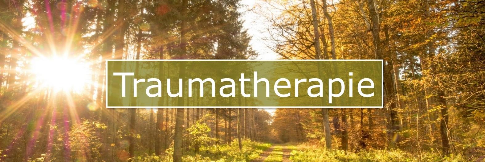 Traumatherapie Somatic Experiencing in Havelterberg, Steenwijk, Meppel, Overijssel bij Sylvia van der Laan